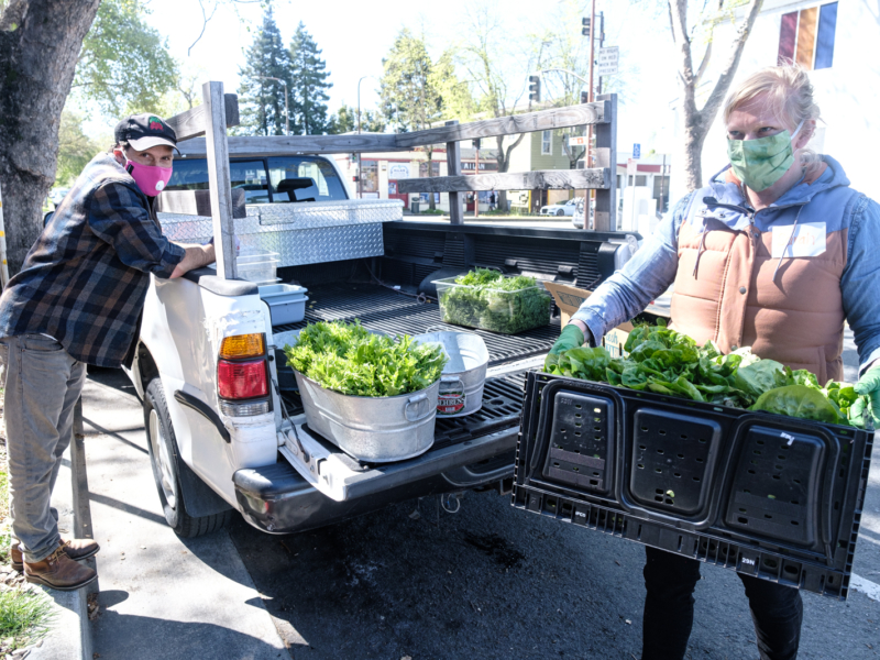 Food pantries rally to help those made food insecure by COVID-19